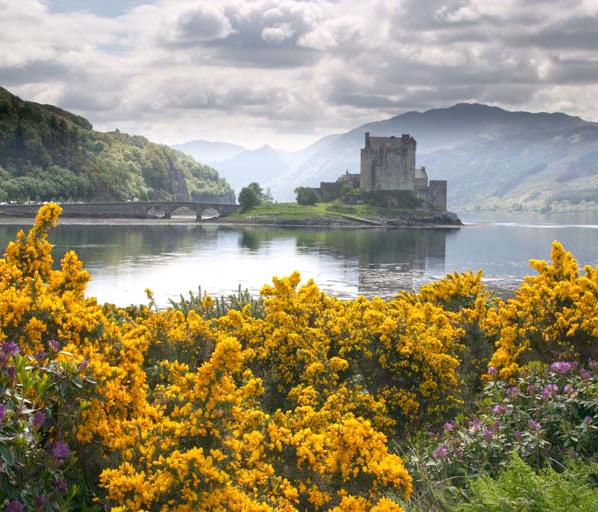Scotland-nature